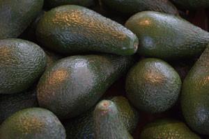Jak poznat zralé avokádo