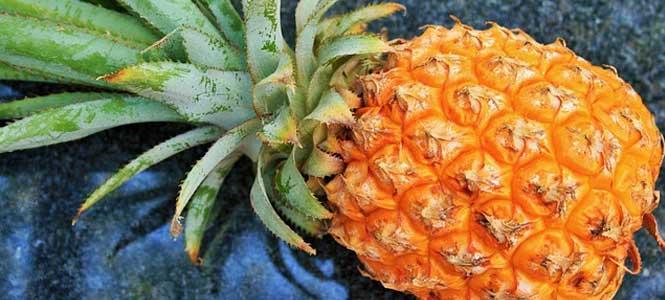 Avokádové guacamole s ananasem